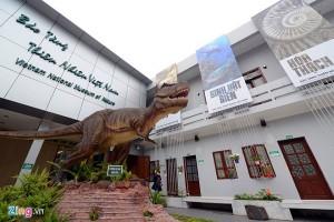 Bên trong Bảo tàng Thiên nhiên Việt Nam